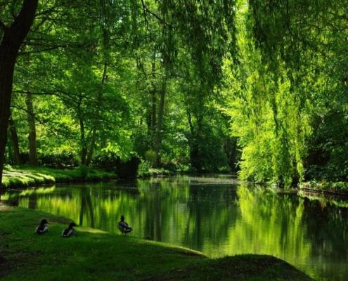 Les Paysages de l'Essonne - Tourisme Essonne